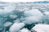 Arctic_svalvard06_thumb